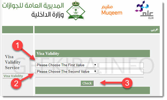 Saudi Visa Validity Check